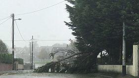 Halálos áldozatai is vannak az Ophelia viharnak Írországban