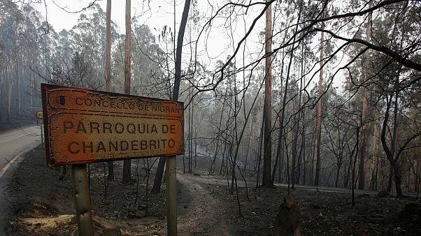 Al menos 35 muertos en Portugal y 4 en Galicia a causa de los incendios