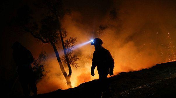 Portugália: egyre több halott a tűzvészben