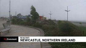 Κλειστά τα σχολεία στη Βόρεια Ιρλανδία λόγω της  «Οφηλίας»