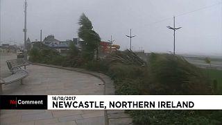 """""""Ophelia"""": Riesenwellen in Nordirland"""
