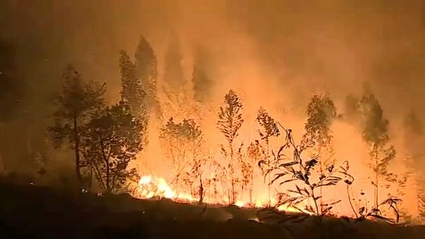 Spain & Portugal suffer deadly weekend of fires