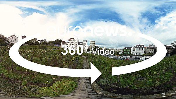 360°: un vigneto nel cuore di Parigi
