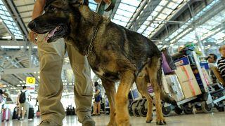 """أزمة """"الكلاب البوليسية"""" تشتعل بين تركيا والنمسا"""