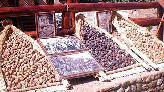 En Algérie, les agriculteurs ont du mal à exporter leurs figues