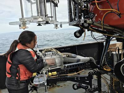 The scientists used underwater robots to collect samples at various ocean depths.