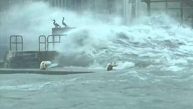 """Übershwemmungen, Erdrutsche, Schnee: Taifun """"Lan"""" fegt über Japan"""