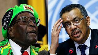 WHO hurt itself with Mugabe decision - Zimbabwe govt