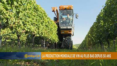 South Africa's increase in wine production [The Morning Call]