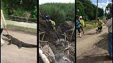 إخراج تمساح يعيق تمديدات الصرف الصحي في فلوريدا