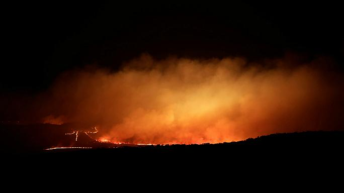 Police in Brazil believe arson may be the cause of wildfire in a national park