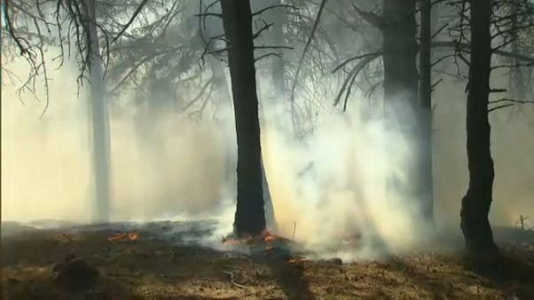 Incendi in Val di Susa, aria irrespirabile fino a Torino