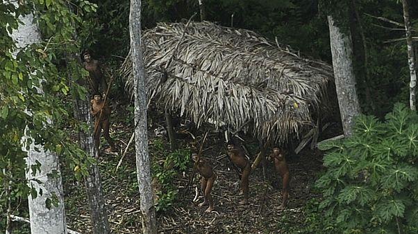 وایاپی؛ قبیلهای در اعماق جنگلهای آمازون، گمشده بین سنت و مدرنیته