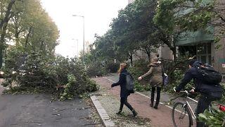 Sturm Herwart: Landunter in Hamburg, viele Bahnstrecken gesperrt