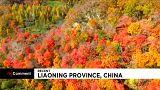 Китай: все оттенки осени