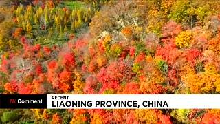 پاییز چین با رنگهای خیرکنندۀ طبیعت