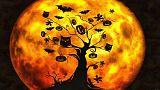 عيد هالوين ماذا يعني وما هو تاريخه؟