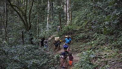 Afrique centrale : des politiciens « verts » soucieux des générations futures
