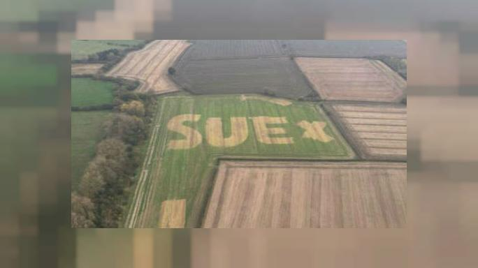 Who is Sue? Message in field sparks hunt for mystery woman