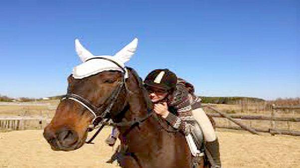 توقيف امرأة بتهمة قيادة حصان تحت تأثير الكحول