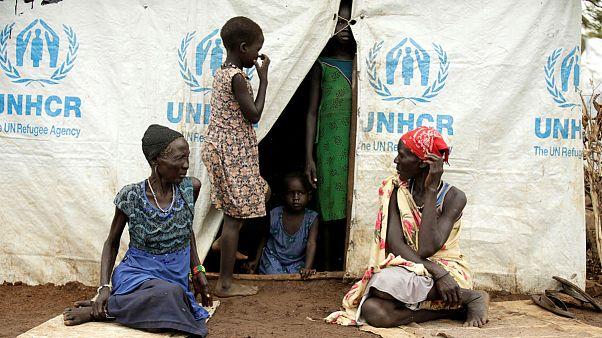 دهها پرونده جدید اتهام جنسی علیه کارکنان سازمان ملل در سه ماه