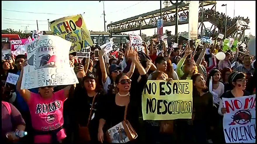 Peruanos protestam contra touradas