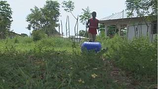 Sierra Leoneans return to give back to their communities