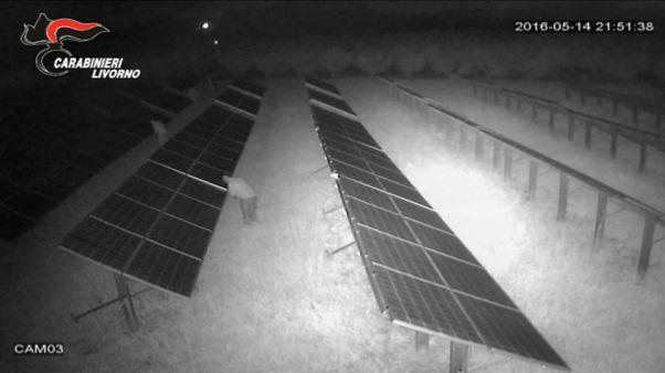 Carabinieri smantellano rete ladri di pannelli solari