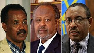 Eritrea backing armed groups against Ethiopia and Djibouti – U.N. experts