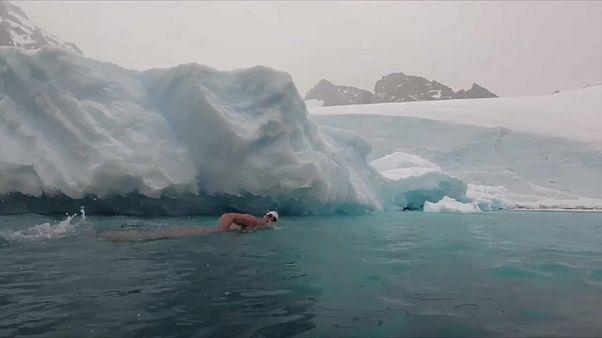 ما المغزى من سباحة لويس بوغ في القارة القطبية الجنوبية؟