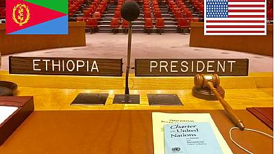 Ethiopia, U.S. must champion lifting of UNSC arms embargo on Eritrea