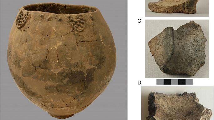 Gut gelagert? Ältester Wein der Welt ist 8000 Jahre alt