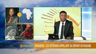 Zimbabwe : L'Union africaine dénonce un coup d'État [The Morning Call]