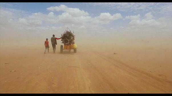"""Ai Weiweis """"Human Flow"""": Ein Aufruf für mehr Menschlichkeit"""
