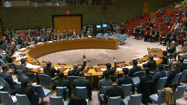 Russia rejects UN SC resolution on Syria probe