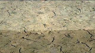 Spanische Dürre: Wird der Tajo bald austrocknen?