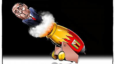 African cartoonists join Mugabe exit party with colour and fun
