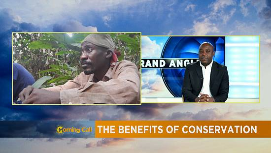 Conservation efforts at Mayombe forest [The Morning Call]
