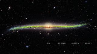 Warped galaxy with the distribution of the young stars (Cepheids) in the di