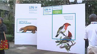 Assemblée de l'ONU au Kenya: la pollution à l'ordre du jour