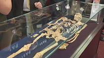 The skeleton of 'Little Foot'' reconstituted by researchers in South Africa