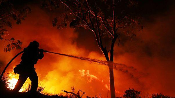 Лесные пожары не утихают в Калифорнии