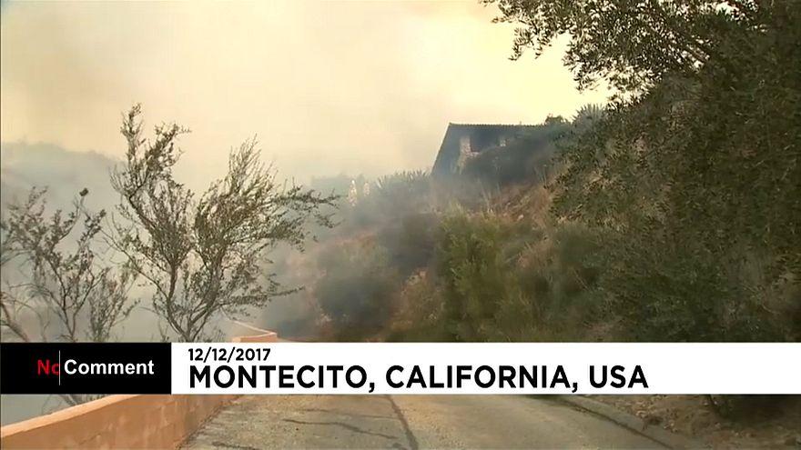 Пожары в Калифорнии: огонь приблизился к жилым домам Монтесито