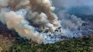 Image: Smoke billows from a fire burning in the Amazon basin near Candeias