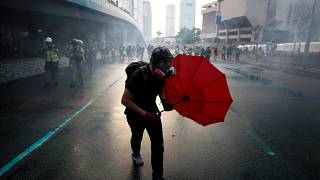 Image: An anti-government protester protects himself with an umbrella in Ho