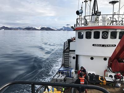 We sailed into Sermilik Fjord to retrieve instruments that had spent the past year measuring water temperature and salinity while anchored to the seafloor.