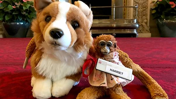 Image: Harriet the Monkey with her new friend, Rex the Corgi, at Buckingham