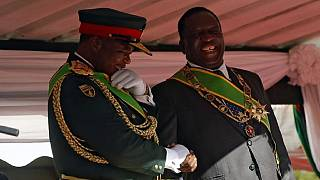 Zimbabwe: Former army chief apppointed vice-president of the ruling party
