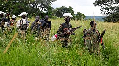 South Sudanese rebels detained by DR Congo army