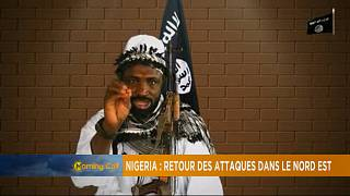 Nigeria: Deadly attacks in the Northeast [The Morning Call]